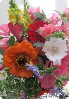 Flowers from the garden...