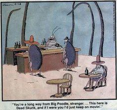 The far side, Far Side Cartoons, Far Side Comics, Funny Cartoons, Cowboy Humor, Gary Larson Far Side, Gary Larson Cartoons, Funny Pictures With Captions, The Far Side, Best Memes