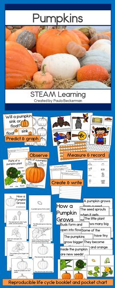 Science, Technology, Engineering, Art and Math learning about pumpkins, great for your primary classroom!  This resource is full of hands on learning projects for kids - lots of fun!  TpT$