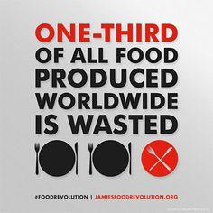 Food Revolution - Food Waste