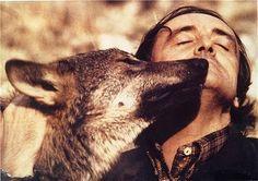 Lobo iberico. Iberian Wolf and the great Rodriguez de la Fuente. Spain