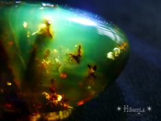 Amber ❦ CHRYSTALS ❦ semi precious stones ❦ Crystals Minerals, Rocks And Minerals, Crystals And Gemstones, Stones And Crystals, Gem Stones, Gem Crafts, Beautiful Rocks, Agate Stone, Stone Jewelry
