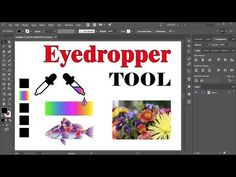 How to Use the Eyedropper Tool in Adobe Illustrator - YouTube