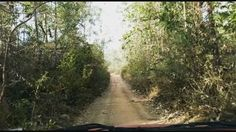 Driving through the jungles of  Kanthadu forests of Tamil Nadu... The kinda driving I would rather be doing right now instead of the morning commute to work 😓😓🙁☹... by shivgoud. roadtrip #india #travel #travelgram #motocross #car #green #instatravel #offroadnation #incredibleindia #wanderlust #dirt #wild #jungle #pondicherry #indiapictures #ontheroad #traveler #beautiful #diesel #nature #forest #suzuki #driving #happy #amazing #elephant #offroad #adventure #wildlife