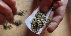 #Internacional Tests para hallar #marihuana en conductores, sin base legal