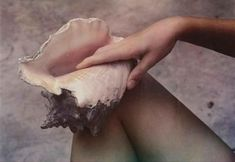 View Hand, shell, and leg by Paul Outerbridge Jr. on artnet. Browse upcoming and past auction lots by Paul Outerbridge Jr. Paul Outerbridge, She And Her Cat, Goddess Of Love, Mother Goddess, Mountain Dew, Greek Gods, Under The Sea, The Little Mermaid, Sea Shells