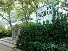 梧桐-门面图片-北京美食-大众点评网