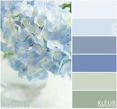 HORTENSIA - Kleurenpalet zacht blauw en groen.