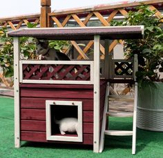 Outdoor Cat Shelter For Winter and EBOOK HOW TO TRAIN YOR CAT BY RIO CENTER,Outdoor Cat House,Ideal Cat Condo,Weatherproof Cat Shelter,Cat Houses For Outside,Kitty House, Wooden Cat House. * New and awesome cat product awaits you, Read it now  : Cat Tree and Tower