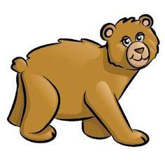 dato curioso sobre osos