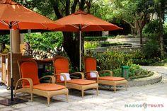. Shangri La, Mango, Hotels, Tours, Places, Outdoor Decor, Home Decor, Manga, Lugares