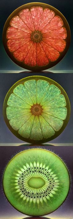 — ronbeckdesigns: Stained Glass | Dennis...