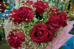 valentine's day flowers delivery in bangalore