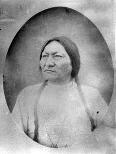 Sitting Bull - Hunkpapa - 1882