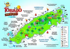Tourist Map Of Tobago 61 Best Things To Do In Tobago images in 2015 | Travel Photography