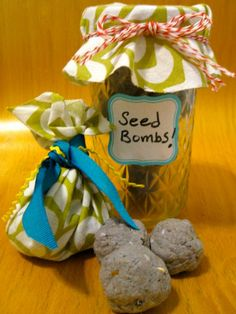 Quick and easy steps for making your own seed bombs to throw and grow wildflowers on HGTV.