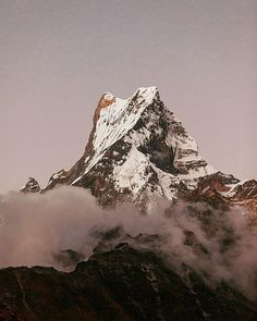 #Repost @nepal.travels  Beautiful evening facing Mt. Machhapuchchhre (6993 m) also known as Mt. Fishtail from High Camp on the Mardi Himal Trek.  #mardihimaltrek #fishtail #trekking #travelnepal #nepaltravels #mountains #peak #landscape #nepalphotoproject #nepal #travel