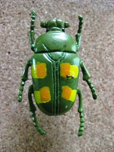 colorful beetles of the world - Google Search