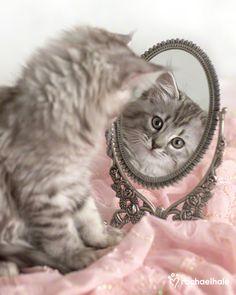 espejito espejito...