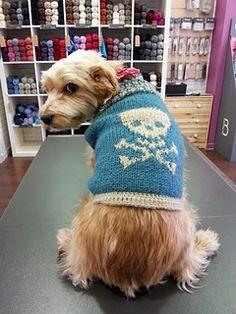 free dog sweater pattern