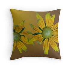 Pretty winter yellow daisy flowers photo art.