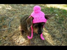 How to Crochet a Dog/Cat Hat Tutorial Size:XS-SMALL - YouTube