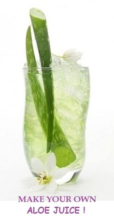"""Aloe Vera Juice is very popular and good for you. Check out our five favorite """"aloe vera juice"""" recipes. It is so easy to make and great with coconut milk."""