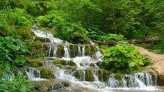 Cascade din Romania,Waterfalls from Romania,Europe Photo Blog, True Beauty, Tudor, Waterfalls, Romania, Europe, Country, Real Beauty, Rural Area