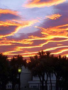 Sunset in Wellington, New Zealand