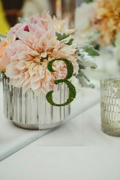 Modern moss table numbers