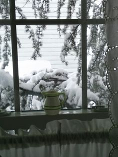 Out the bathroom window on a snowy day