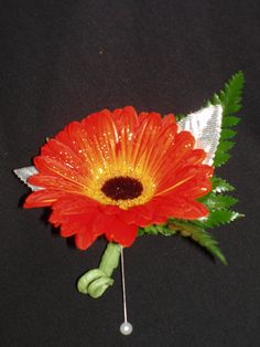 Orange Gerbera Daisy with leather leaf bout