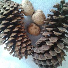 Piñas y nueces, una decoración muy económica . Las nueces se guardan y conservan por mucho tiempo.