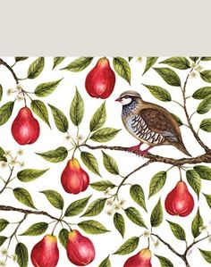 Buy Museums & Galleries Partridge in a Pear Tree Cards, Pack of 5 from our Christmas Cards range at John Lewis & Partners. Charity Christmas Cards, Christmas Card Packs, Merry Christmas To All, Holiday Cards, Holiday Tree, Celebrating Christmas, Christmas Paper, Christmas Images, Christmas 2019
