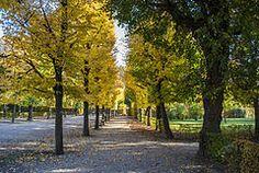 Autumn - Wikipedia, the free encyclopedia