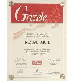 Statuetka Gazele Biznesu 2003 r. potwierdzająca przynależność naszej firmy do grona najbardziej dynamicznie rozwijających się firm w IV edycji Dziennika PULS BIZNESU