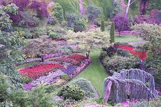 Fantasy Garden made real at Butchart Gardens near Victoria BC Canada Victoria Bc Canada, Victoria British Columbia, Need A Vacation, Vacation Spots, Dream Vacations, Interior Design For Beginners, Botanical Gardens Near Me, Wonderful Places, Beautiful Places