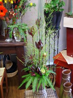 Emu feather and Umbrella fern used in this arrangement