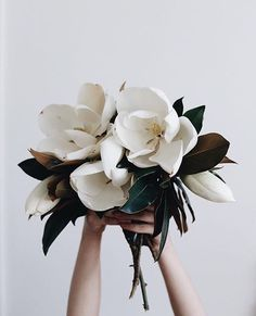 Love the simplicity of this bouquet.... d mom loves magnolias... for centerpiece ideas... maybe even add some herb elements and tiny shades of teal, blue or lavender pops...