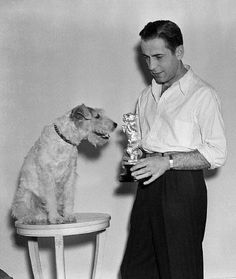 Humphrey Bogart presents a silver dog statuette to Skippy, a terrier, on March 11, 1938. Skippy appeared in many films, with the stage name Asta, and won a popularity poll. Bogart originated the idea of the canine award.
