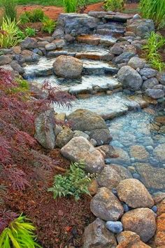 Beautiful stream in backyard of a house.