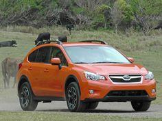 The all-new 2013 Subaru XV Crosstrek