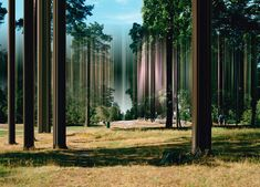 Distortioned Photography by Ralf Brueck  Ralf Brueck is a German artist born in Dusseldorf. From 2010 to 2014, Ralf has developed a series entitled Distortion in which he stretched photographic elements. A kind of digital manipulation to extract images from of their main element and giving new meaning to the viewer.