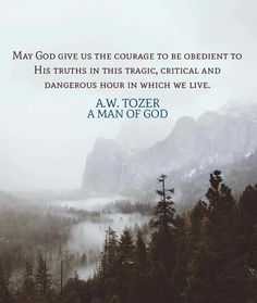 May God give us the courage to be obedient to his truths in this tragic, critical and dangerous hour in which we live. Aw Tozer Quotes, Faith Quotes, Bible Quotes, Christian Life, Christian Quotes, A W Tozer, Soli Deo Gloria, All That Matters, Godly Man