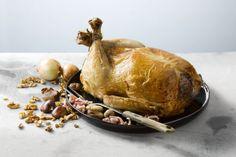 Zalig toch als we kunnen beginnen nadenken over uitgebreide maaltijden voor tijdens de feestdagen. Gevulde kalkoen is én blijft een echte klassieker op het menu. Zin om deze keer echt indruk te maken bij je tafelgenoten? Vul 'm dan lekker zelf!
