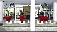 ❤️ Decoración ( fuentes y plantas)