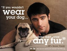 PETA which has been one of the most influential organization against animal cruelty, is now giving out fur coats. Cane Corso, Sphynx, Chinchilla, Otter, Rottweiler, Pitbull, Peta Ads, Pugs, Husky