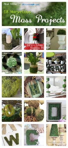 Decor & More: Mad About Moss projects