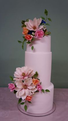Magnolia cake without the painting