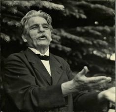 The Albert Schweitzer Page